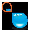 LogoWeb-Gota